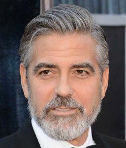 barba hollywoodian