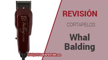 Cortapelos Whal Balding